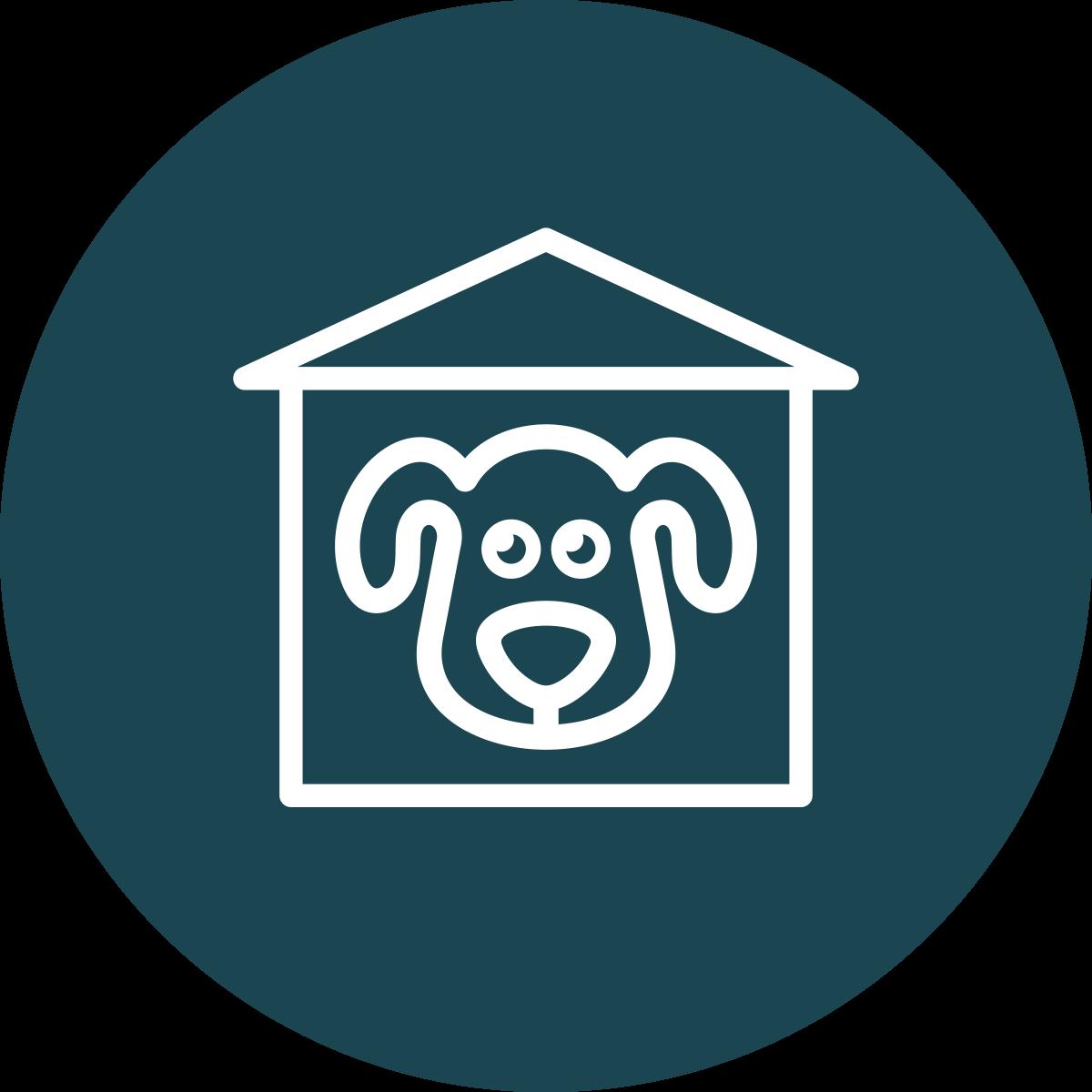 Suņu apmācība mājās